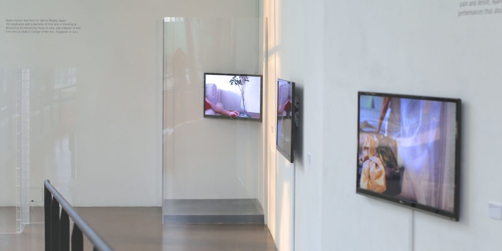 Intimate Strangers, installation
